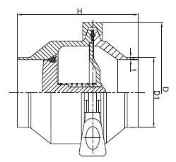sanitary weld check valve