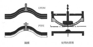 use-epdm-pefe-gasket-stainless-steel-sanitary-diaphragm-valve-wellgreen